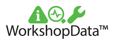 logo workshopdata